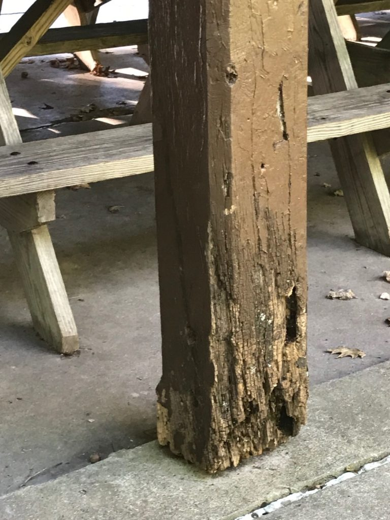 Rotted shelter column - Spring Mill State Park