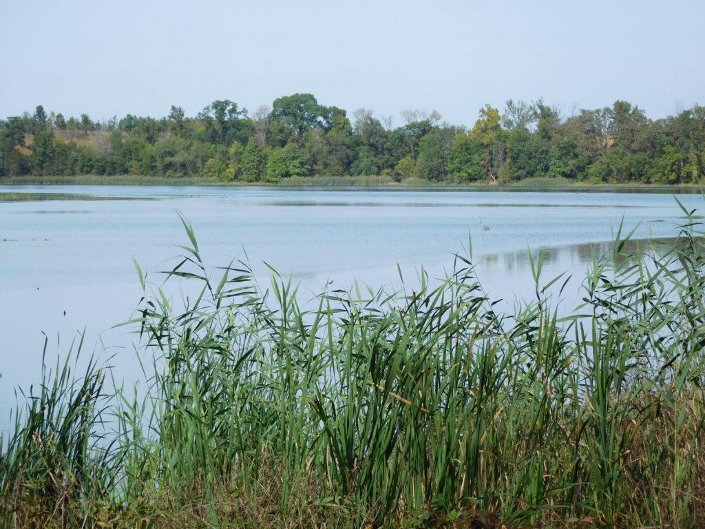 Patoka River National Wildlife Refuge.